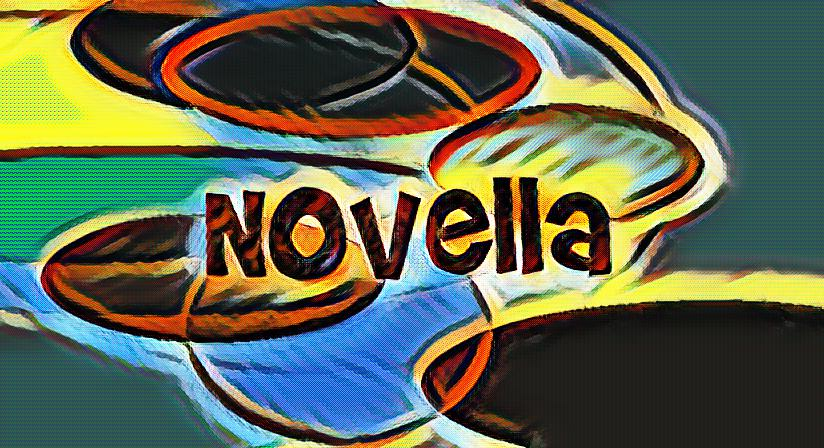 What is a novella and how is it structured?